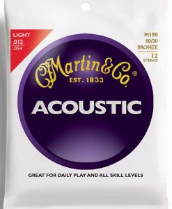 12 String acoustic guitar strings